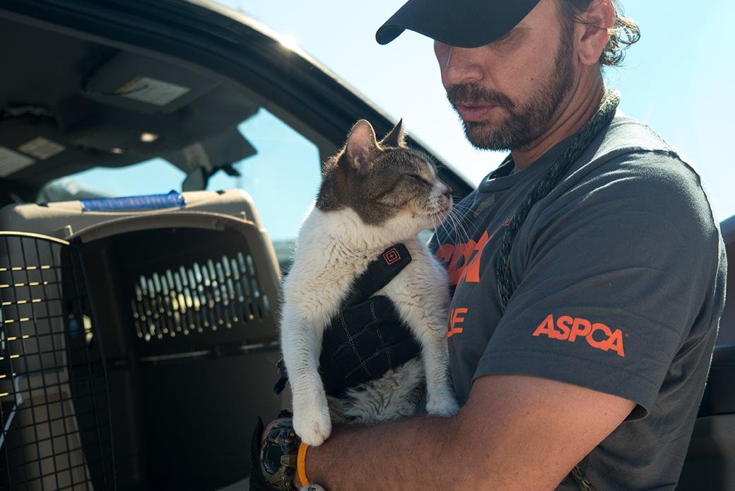 ASPCA field responder