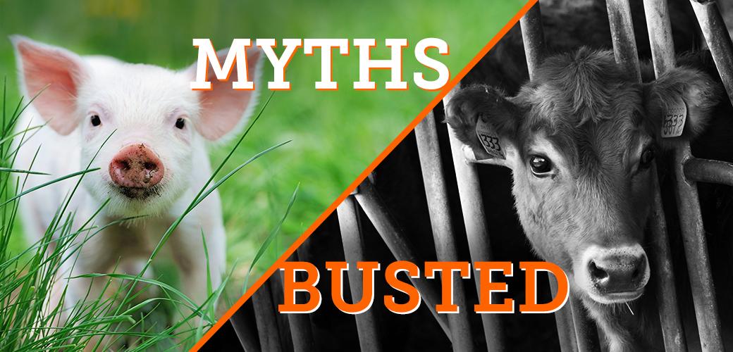 6 farming myths