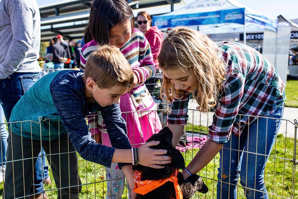 three child petting a dog