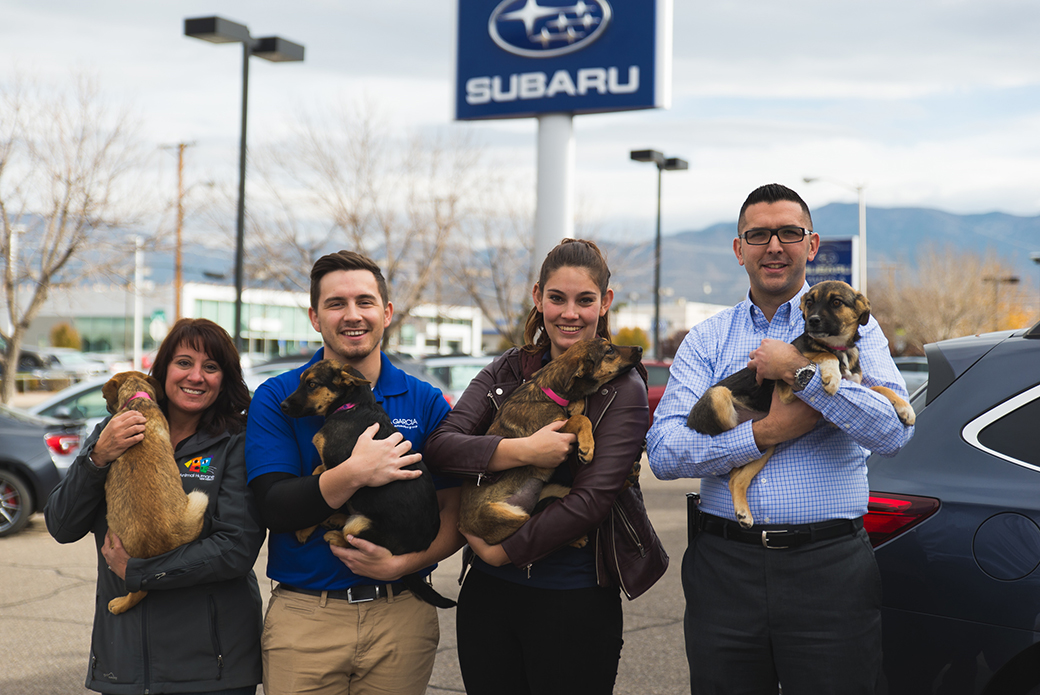four people with dogs at a subaru dealership