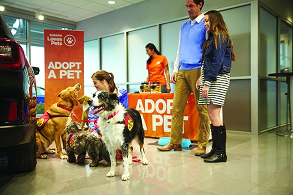 Adopt A Pet event