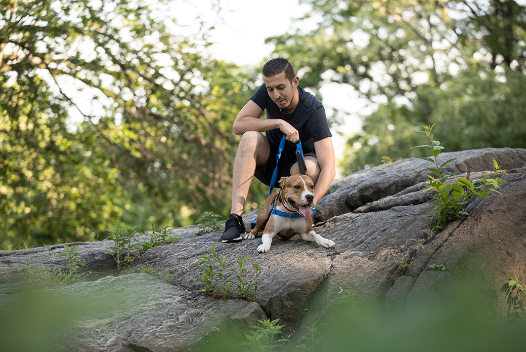 a man sitting with his dog on a rock in the park