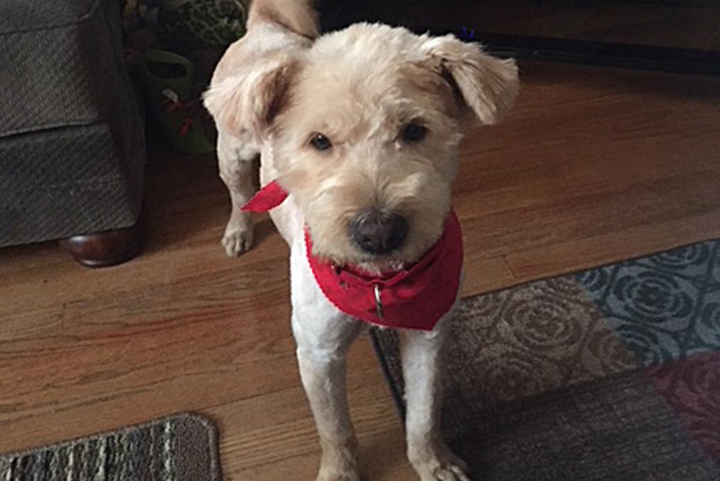 Winnie in her new home