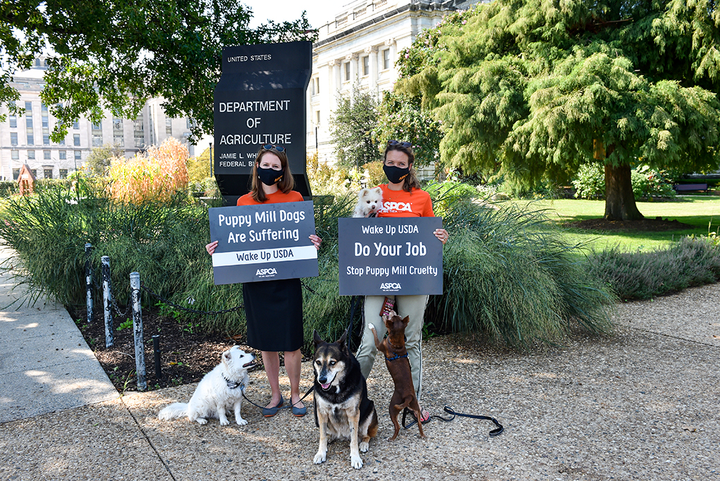 usda petition delivery