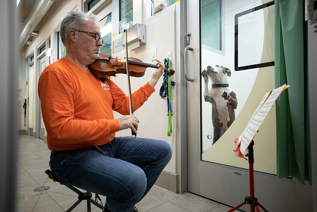 Martin Agee playing a violin playing to a dog