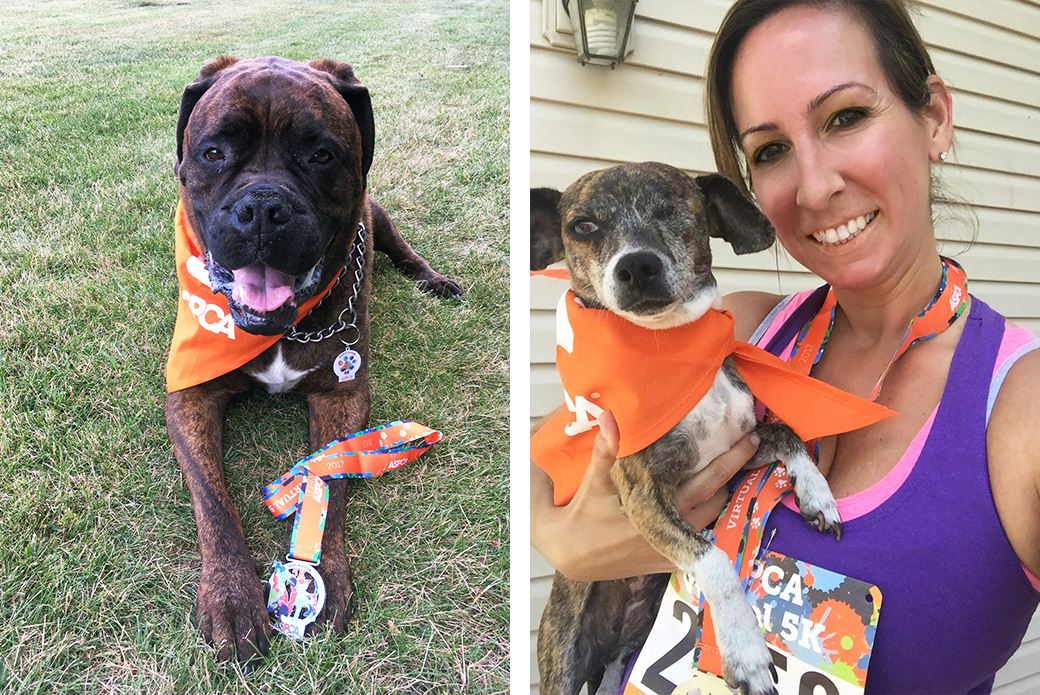 Virtual 5k runner and her two dogs