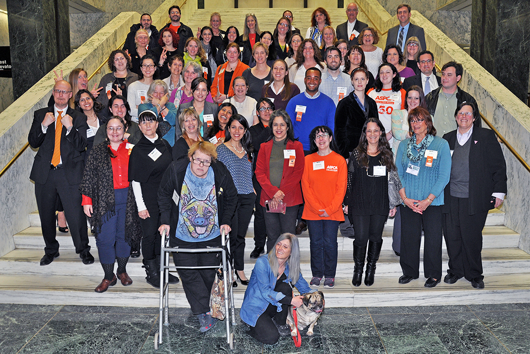 New York Animal Advocates, Lawmakers Gather in Albany for Voices for Animals Day