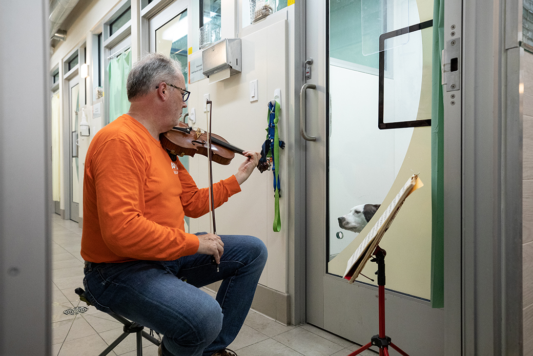 Martin Agee playing violin for dog in shelter