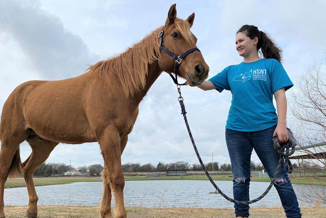 HSNT volunteer with horse