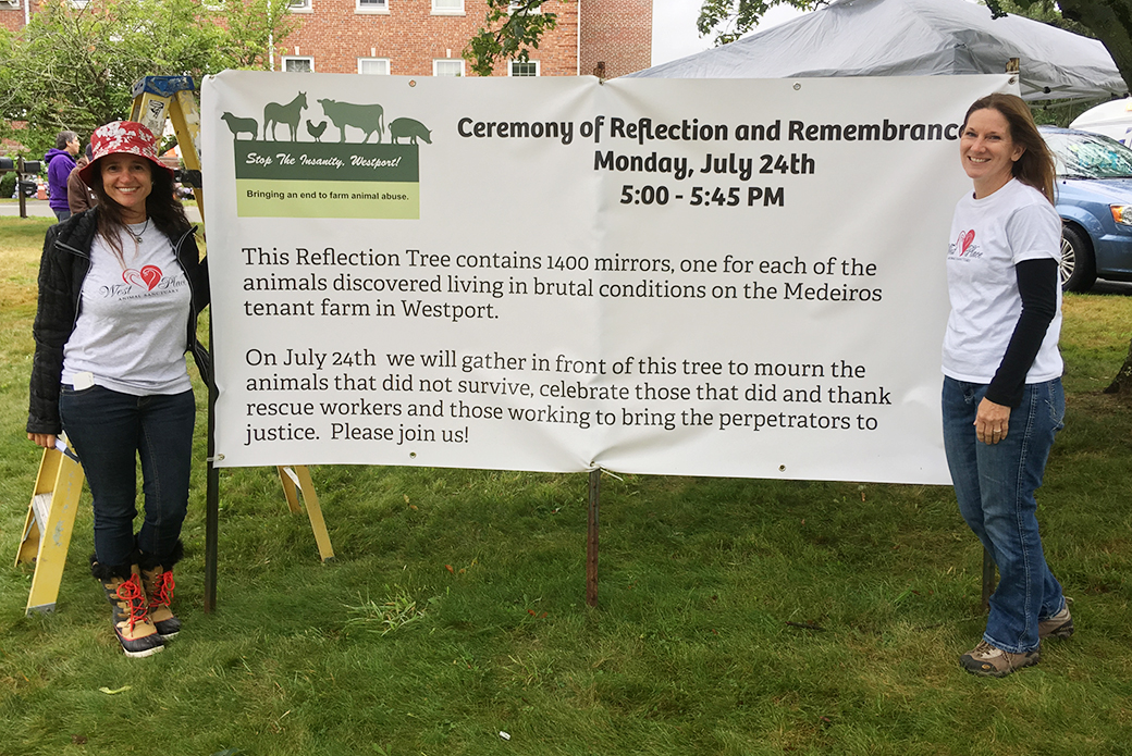 reflection and remembrance sign