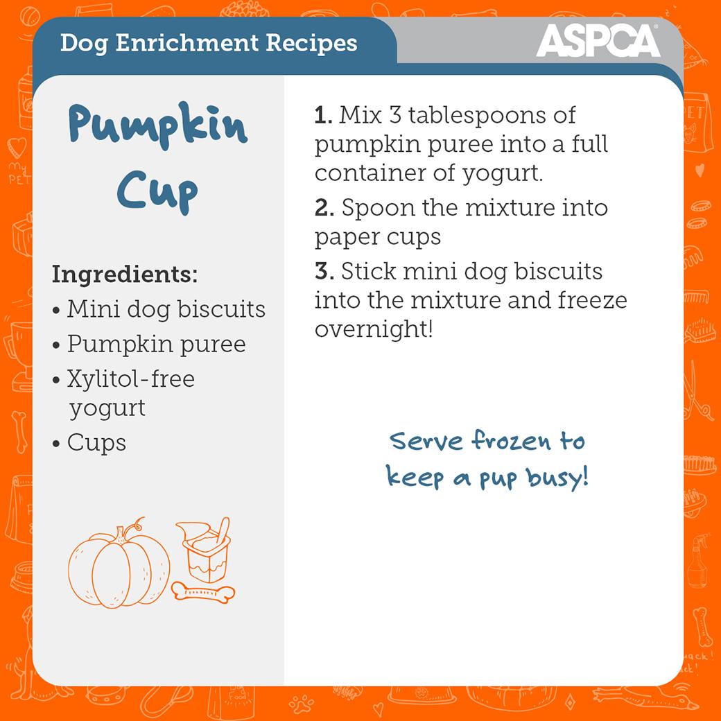 pumpkin cup recipe