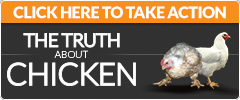 TruthAboutChicken.org