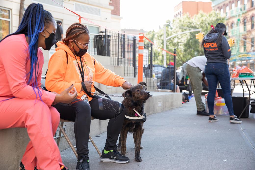 ASPCA Bronx CVC wellness event
