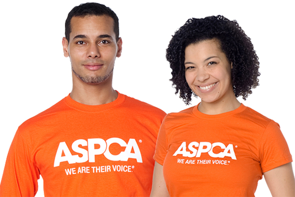 Check Out Our New Look! Shop the ASPCA Online Store Today
