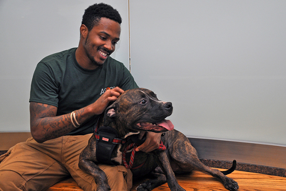Christmas Eve Surprise: Former Long Stay Dog Visits ASPCA Adoption Center One Year Later
