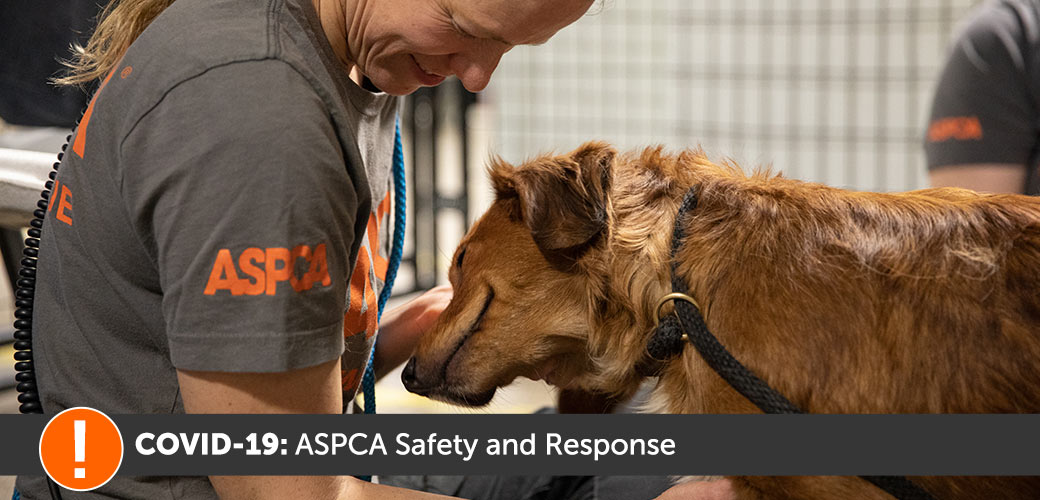 ASPCA's Response to COVID-19