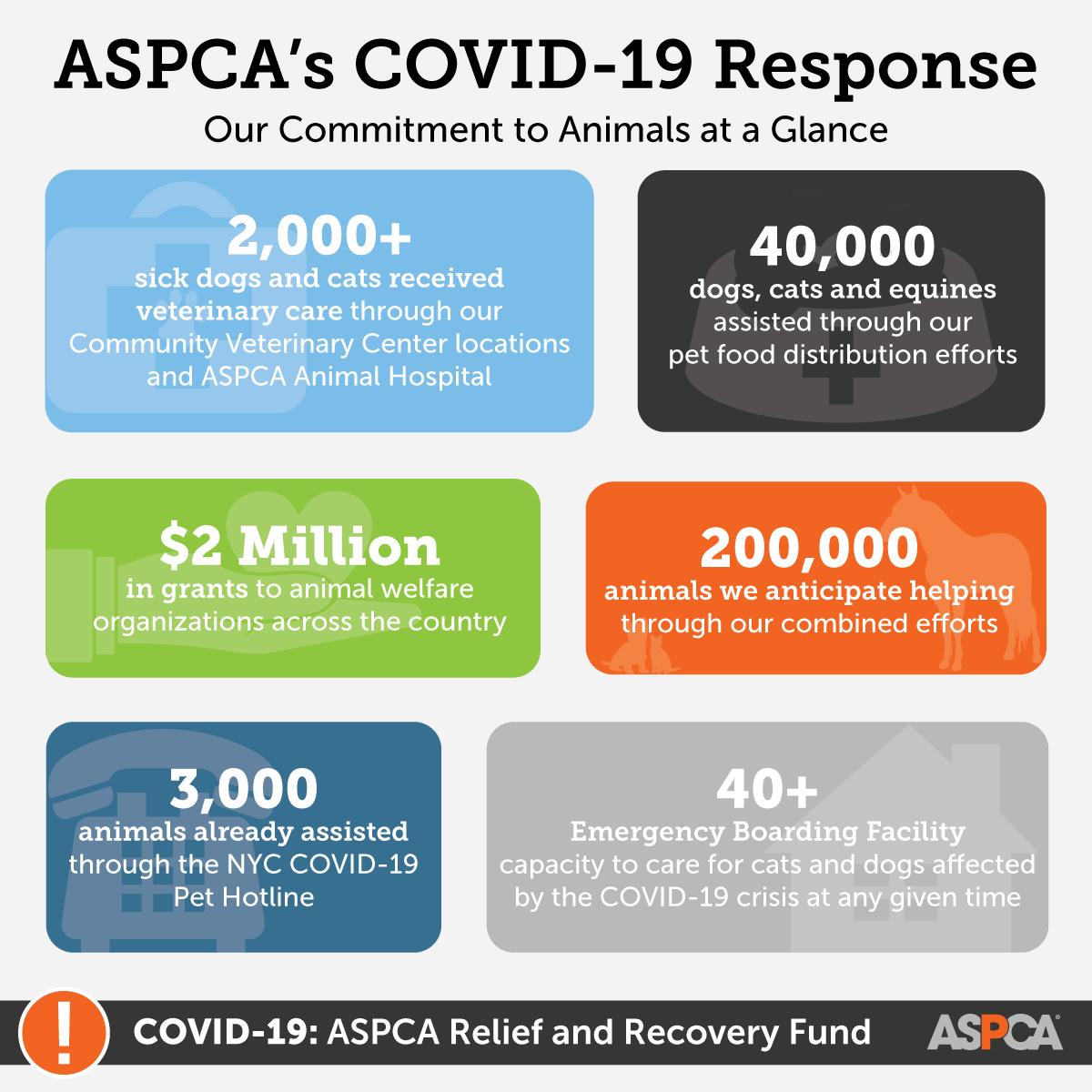 ASPCA's COVID-19 Reponse
