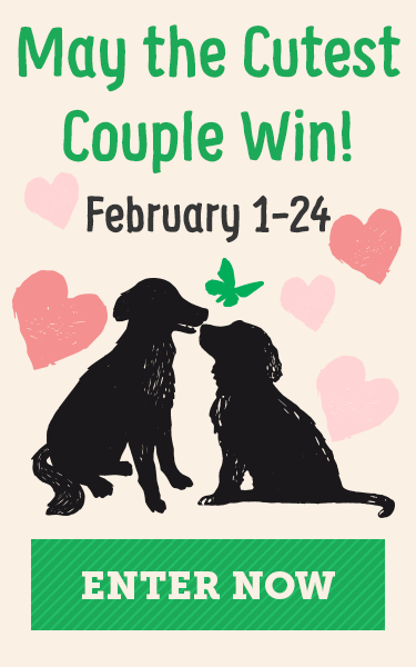 May the cutest couple win! Enter now!