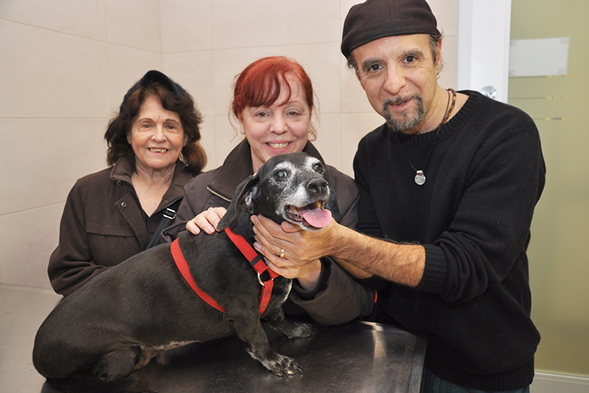 One man and two woman pose with small black dog at the vet's