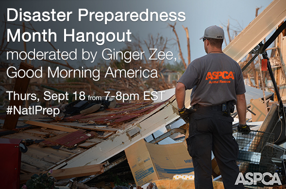 Disaster Preparedness Month Hangout