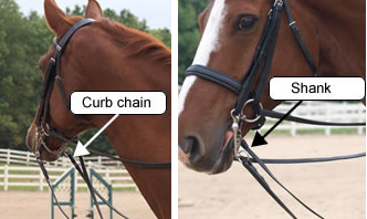 curb chain and shank