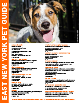 East New York Pet Guide