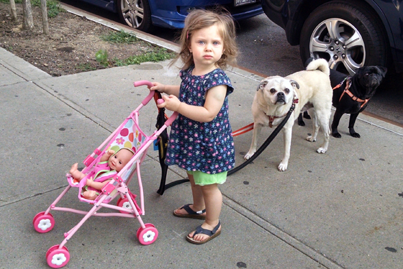 Little girl standing next to two dogs and toy stroller