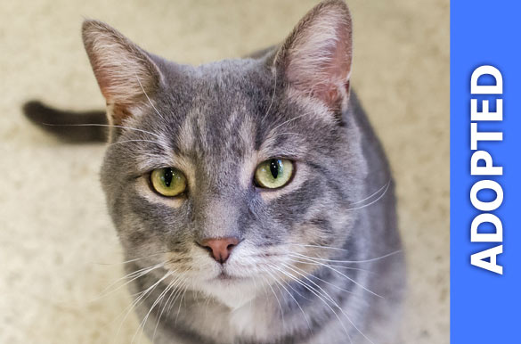 Dean was adopted!