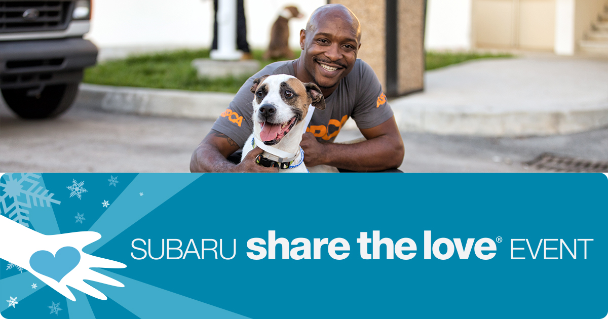 subaru share the love event check out fee waived pet adoption events this weekend and all. Black Bedroom Furniture Sets. Home Design Ideas