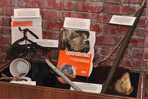 ASPCA dog fighting exhibit