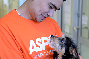 Man wearing orange ASPCA shirt holding small dog