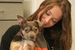 ASPCA staff holding dog from behavioral rehab center