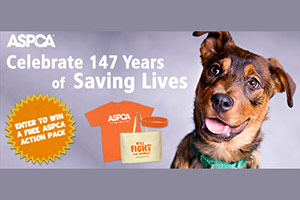 It's Time to Celebrate: April is Prevention of Cruelty to Animals Month!