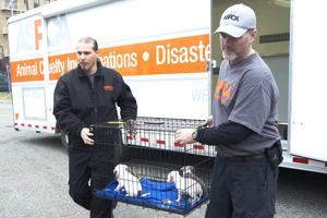 ASPCA Disaster Response