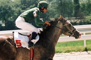 Jockey and horse racing