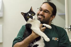 ASPCA staffer holding black and white cat