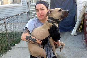 ASPCA responder holding emaciated pit bull