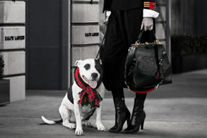 The ASPCA Teams Up With Ralph Lauren for Adopt a Shelter Dog Month