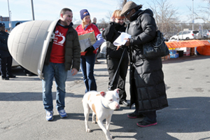 ASPCA's Operation Gimme Shelter Provides Dog Houses for At-Risk Pets