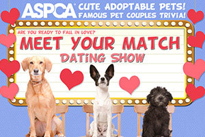 dating show flyer