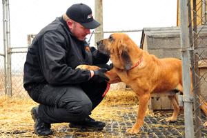 ASPCA FIR responder checks out bloodhound