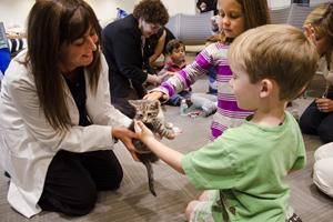 Children pet a kitten