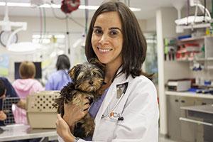 Dr. Kristen Frank