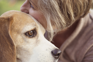 Woman hugging beagle