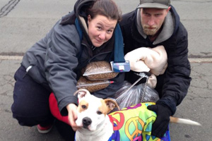 Helping Pets of the Homeless with Operation Blankets of Love