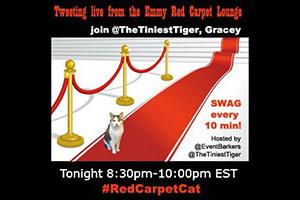 #redcarpetcat