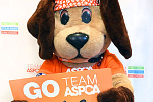 "larry the dog mascot holding a sign that says ""GO TEAM ASPCA"""