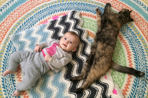 Baby and cat napping on blanket