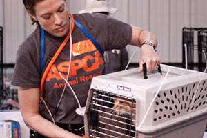 ASPCA Responder holds carrier with orange cat inside