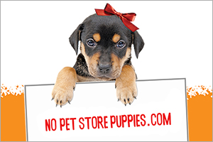 No Pet Store Puppies sign